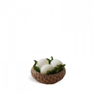 Acorn Nest with Eggs