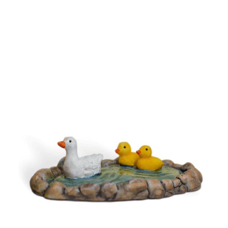 Little Duck Pond