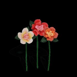 Cottage Garden Roses – Sunset