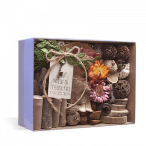 Natural Treasures Collection