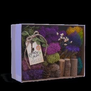 Rainbow Garden Moss Kit