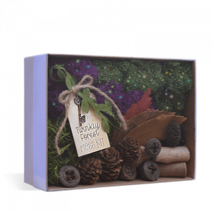Twinkly Forest Moss Kit