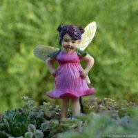 fairy ginny_fga