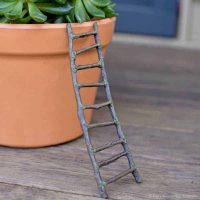 woodland ladder_fga